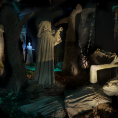 Sarner The Weeping Angels Forest at the regenerated Doctor Who Experience 2